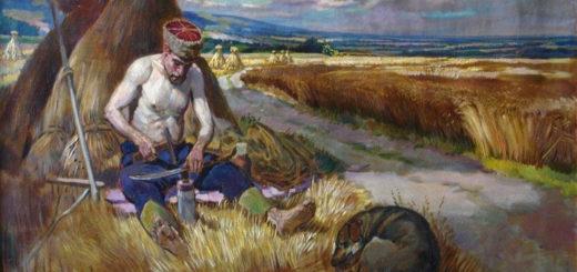 energetik 20170619 4 520x245 - Ставропольским казакам стали давать землю без торгов