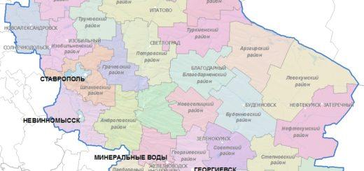 energetik 20170629 5 520x245 - Лучшие умы России займутся развитием Ставропольского края